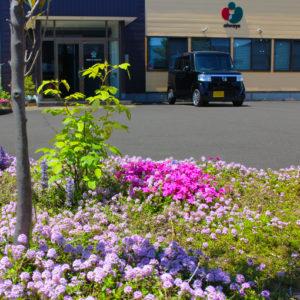 満開の花壇のある駐車場